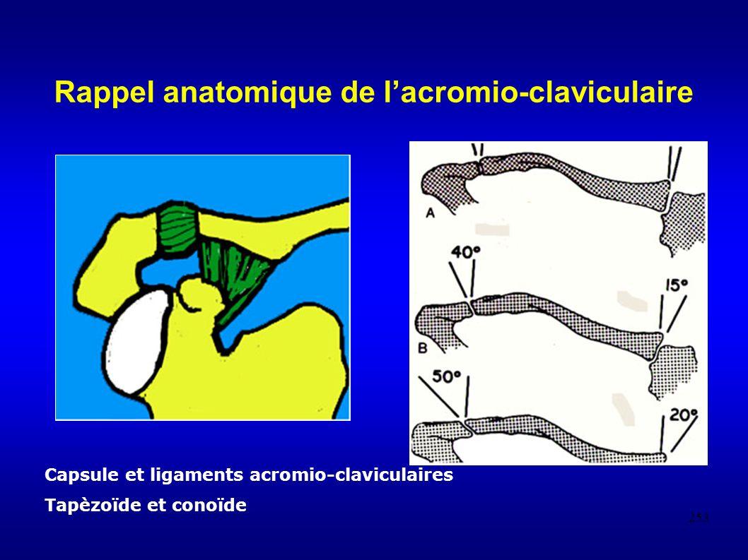 Rappel anatomique de l'acromio-claviculaire