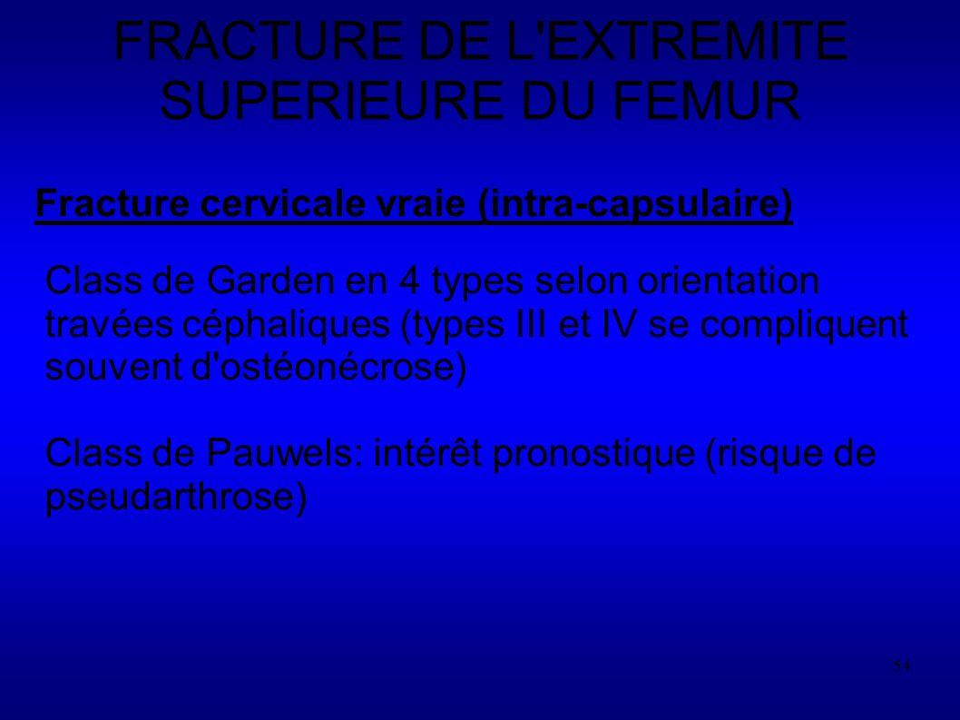 FRACTURE DE L EXTREMITE SUPERIEURE DU FEMUR