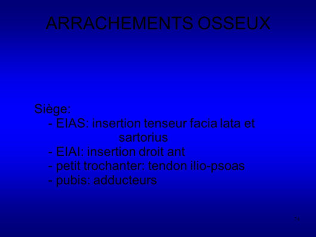 ARRACHEMENTS OSSEUX Siège: