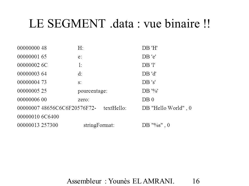 LE SEGMENT .data : vue binaire !!