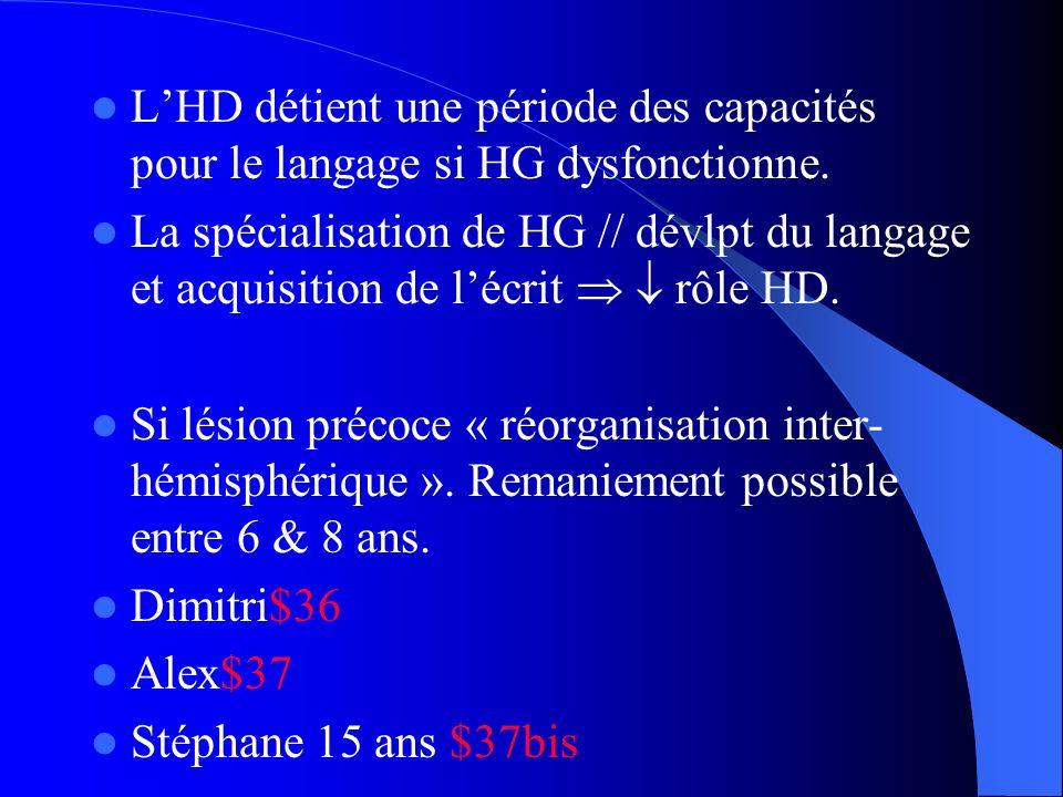 L'HD détient une période des capacités pour le langage si HG dysfonctionne.