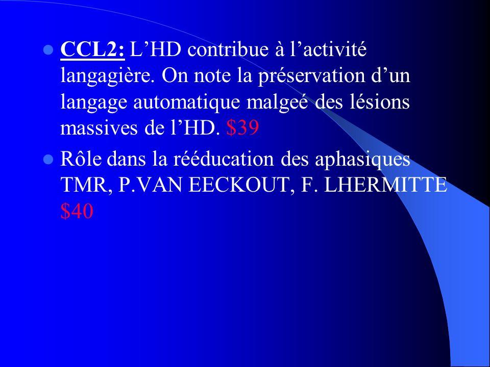 CCL2: L'HD contribue à l'activité langagière