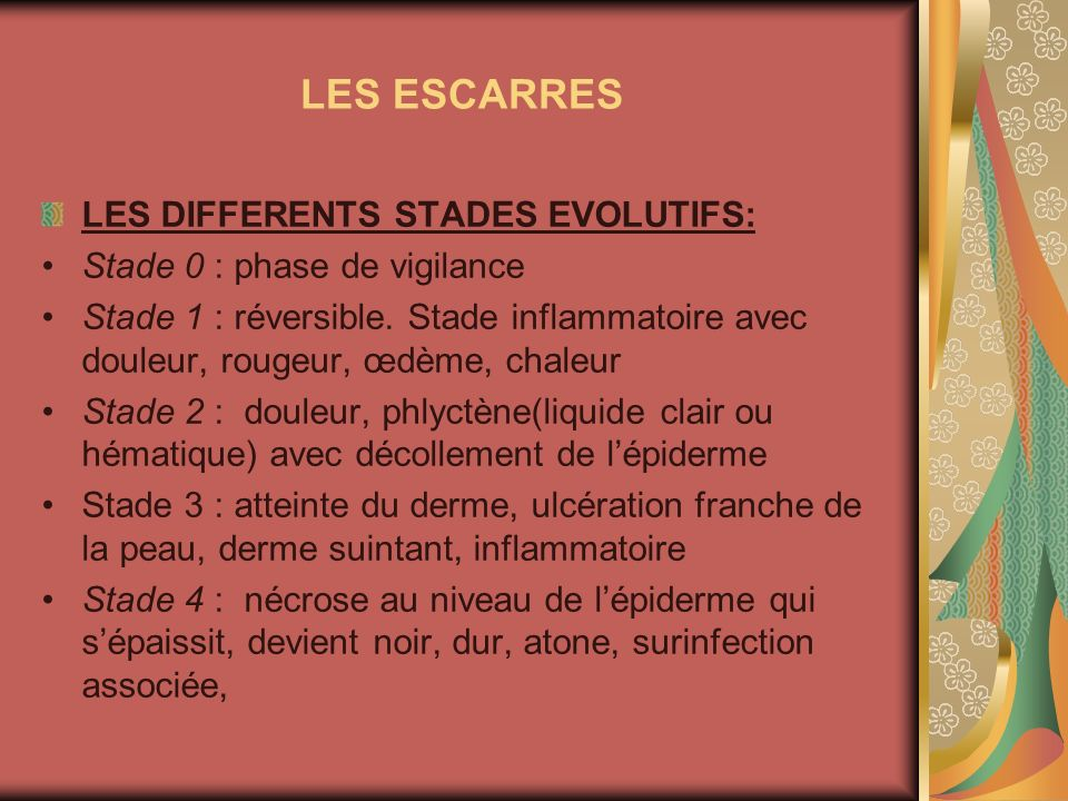 LES ESCARRES LES DIFFERENTS STADES EVOLUTIFS: