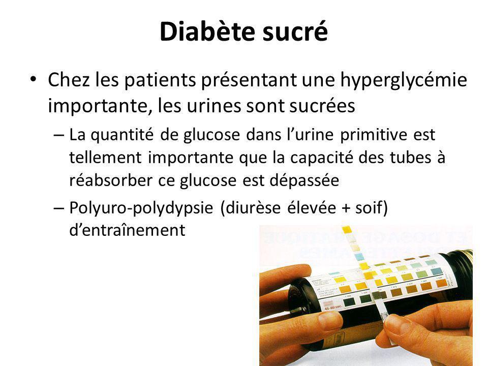 Diabète sucré Chez les patients présentant une hyperglycémie importante, les urines sont sucrées.