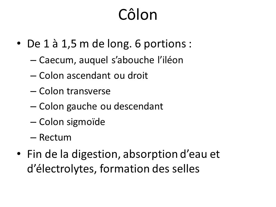 Côlon De 1 à 1,5 m de long. 6 portions :