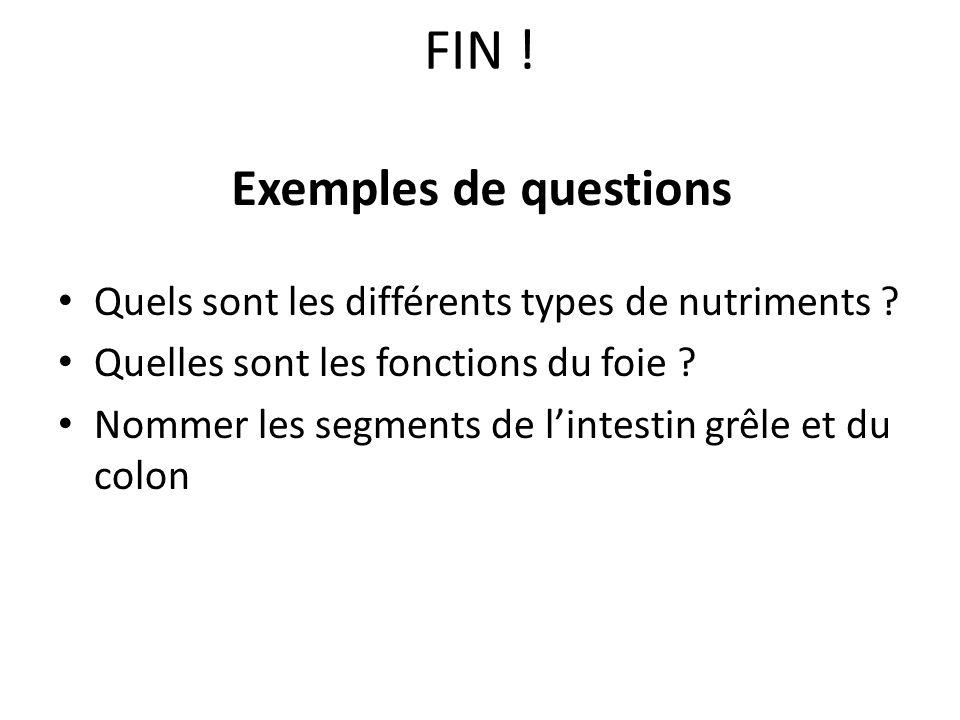 FIN ! Exemples de questions