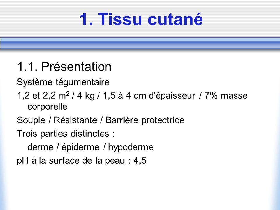 1. Tissu cutané 1.1. Présentation Système tégumentaire