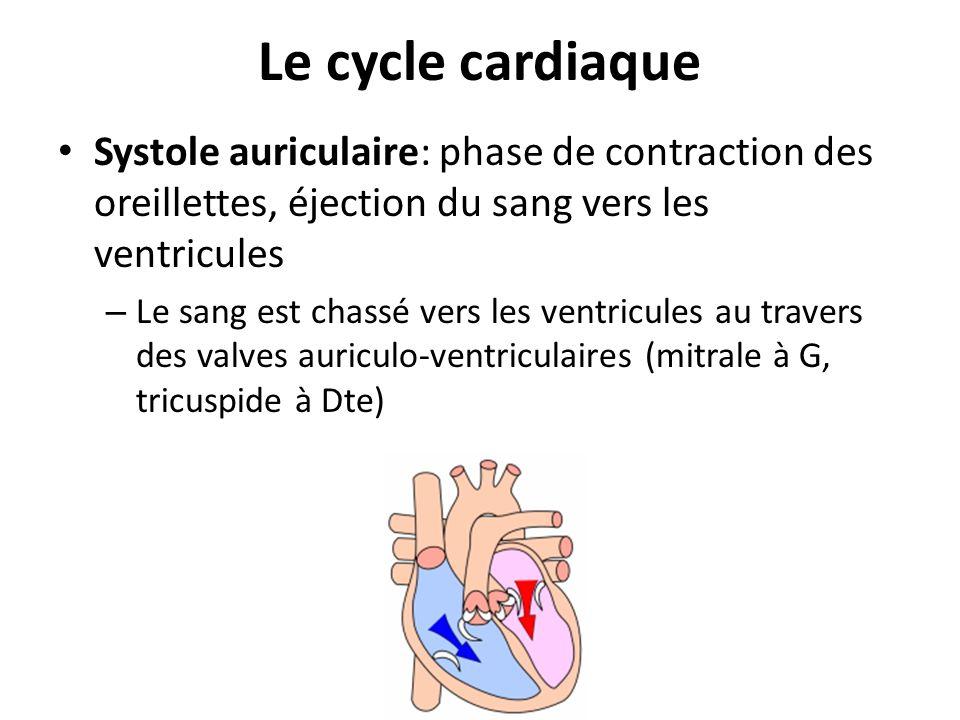 Le cycle cardiaque Systole auriculaire: phase de contraction des oreillettes, éjection du sang vers les ventricules.