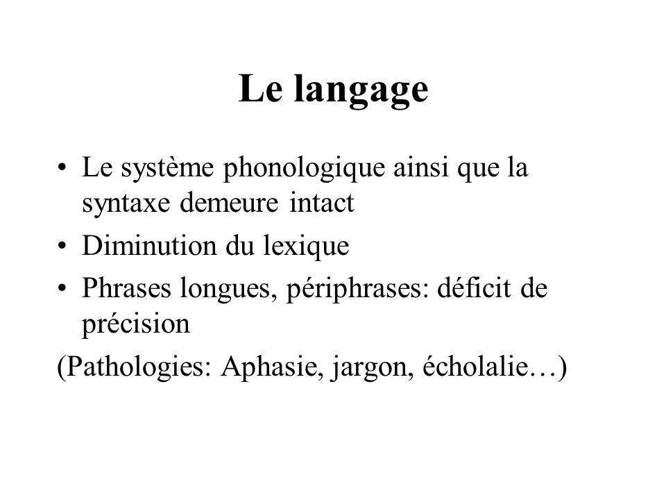 Le langage Le système phonologique ainsi que la syntaxe demeure intact