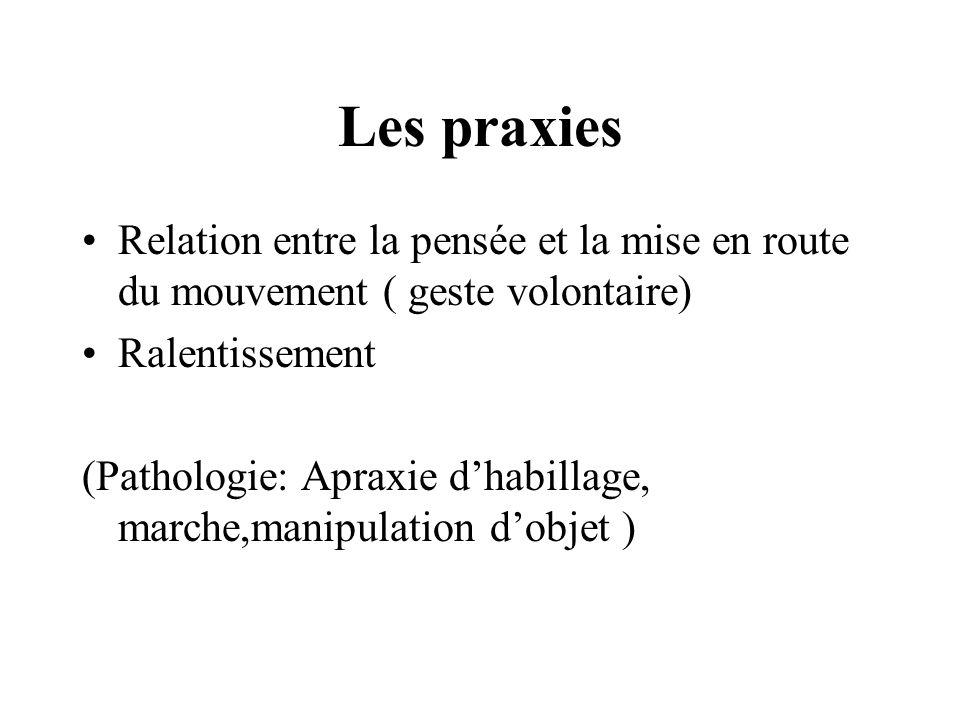 Les praxies Relation entre la pensée et la mise en route du mouvement ( geste volontaire) Ralentissement.