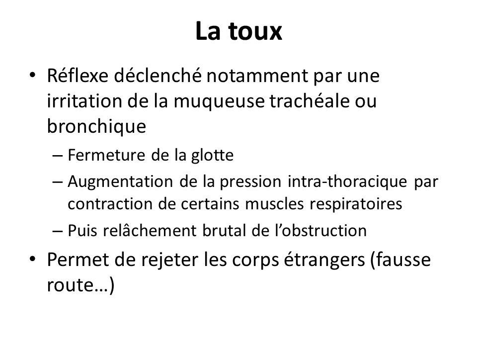 La toux Réflexe déclenché notamment par une irritation de la muqueuse trachéale ou bronchique. Fermeture de la glotte.