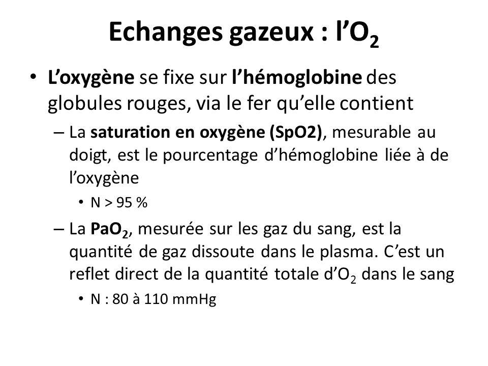Echanges gazeux : l'O2 L'oxygène se fixe sur l'hémoglobine des globules rouges, via le fer qu'elle contient.