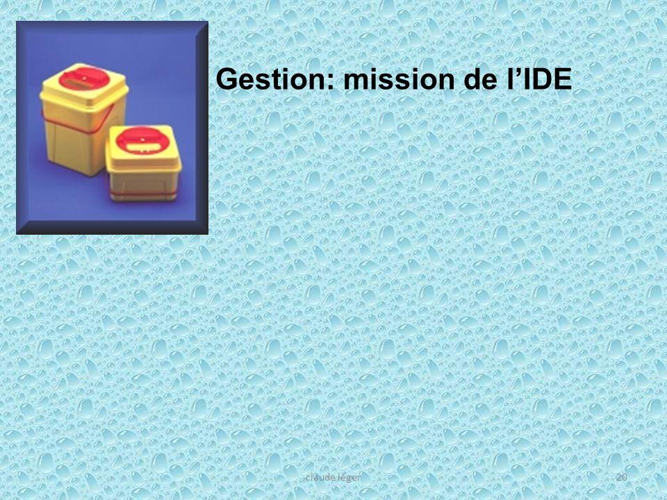Gestion: mission de l'IDE