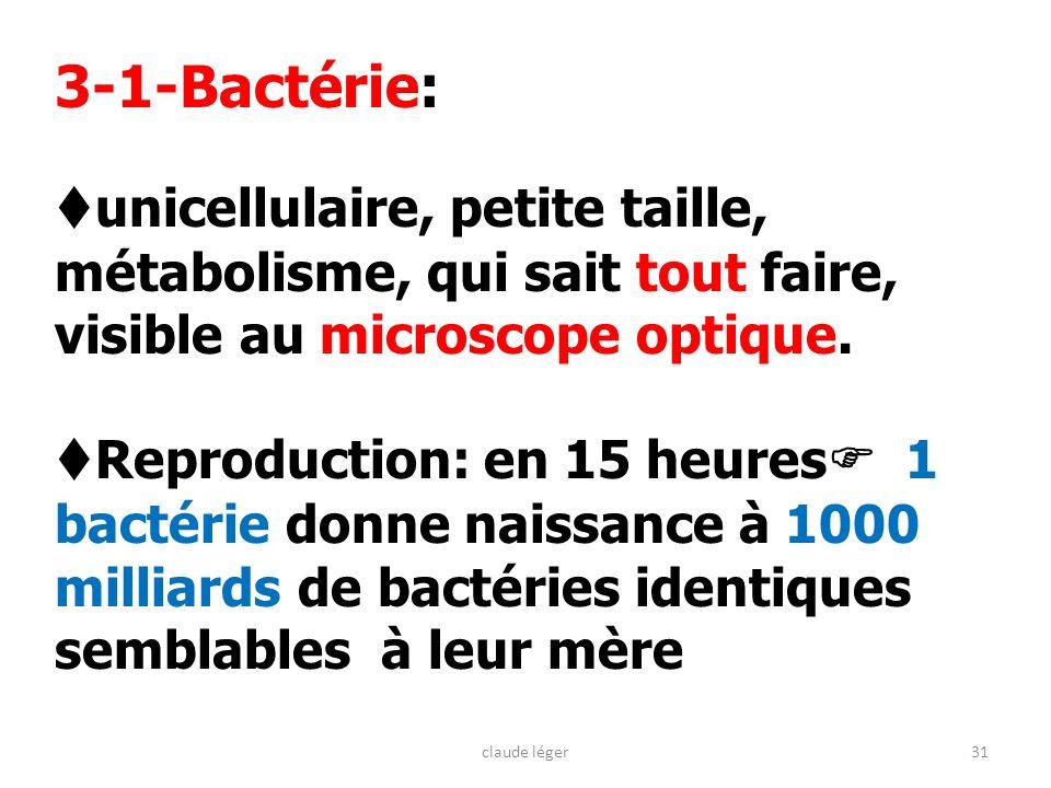 3-1-Bactérie: unicellulaire, petite taille, métabolisme, qui sait tout faire, visible au microscope optique.