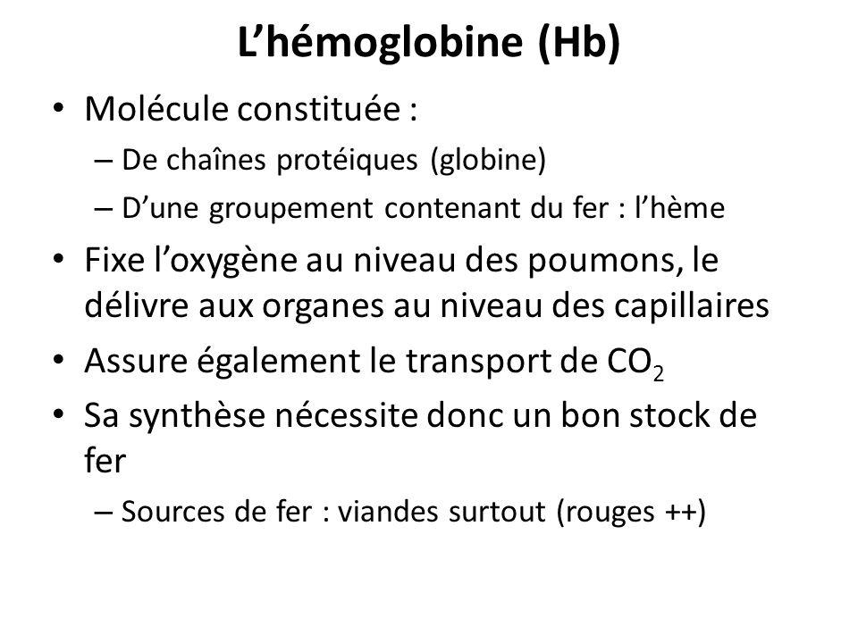 L'hémoglobine (Hb) Molécule constituée :