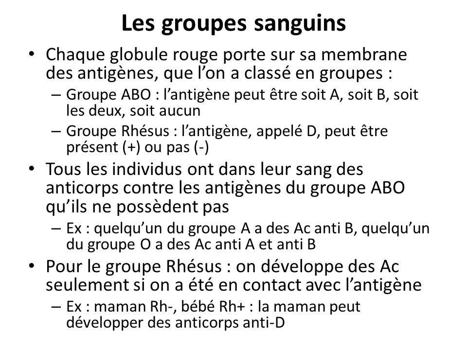 Les groupes sanguinsChaque globule rouge porte sur sa membrane des antigènes, que l'on a classé en groupes :