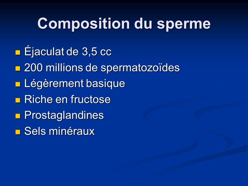 Composition du sperme Éjaculat de 3,5 cc