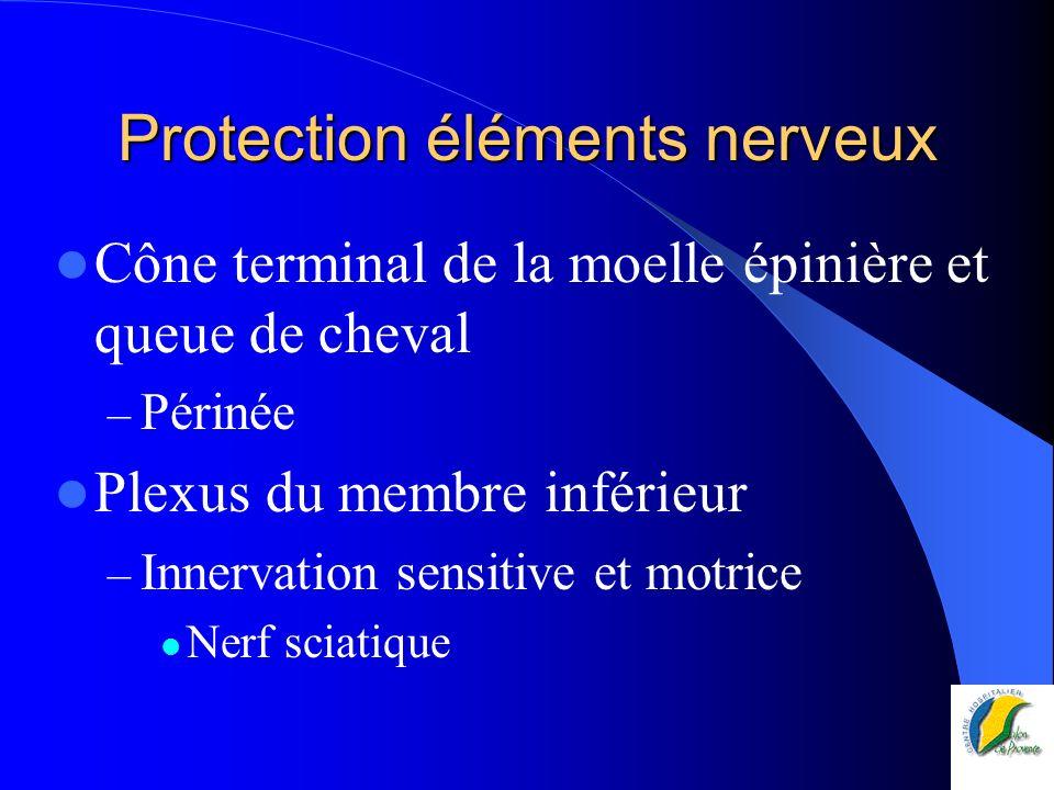 Protection éléments nerveux