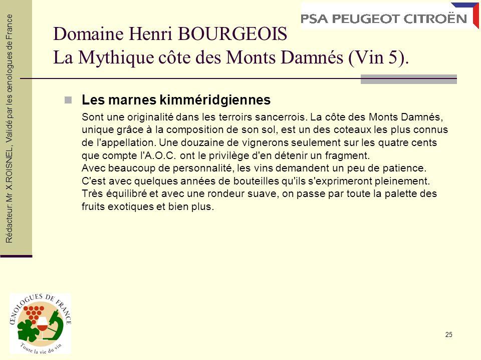 Domaine Henri BOURGEOIS La Mythique côte des Monts Damnés (Vin 5).