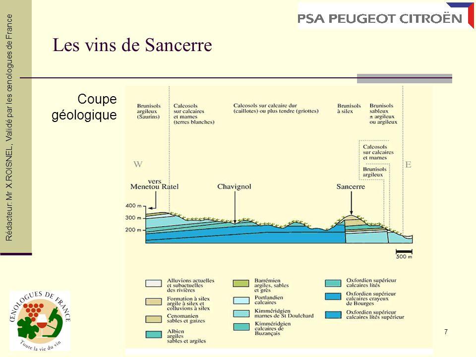 Les vins de Sancerre Coupe géologique