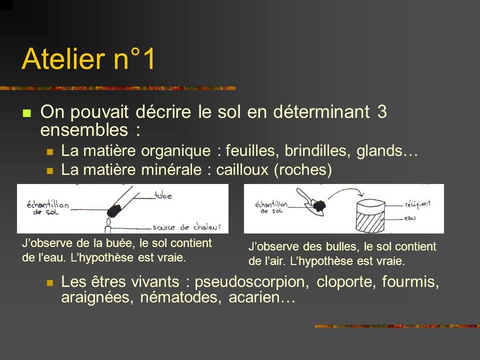 Atelier n°1 On pouvait décrire le sol en déterminant 3 ensembles :