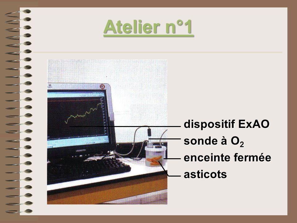 Atelier n°1 dispositif ExAO sonde à O2 enceinte fermée asticots