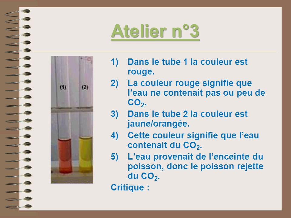 Atelier n°3 Dans le tube 1 la couleur est rouge.