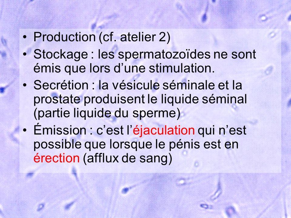 Production (cf. atelier 2)