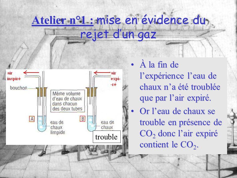 Atelier n°1 : mise en évidence du rejet d'un gaz