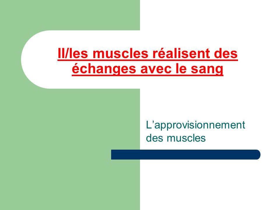 II/les muscles réalisent des échanges avec le sang