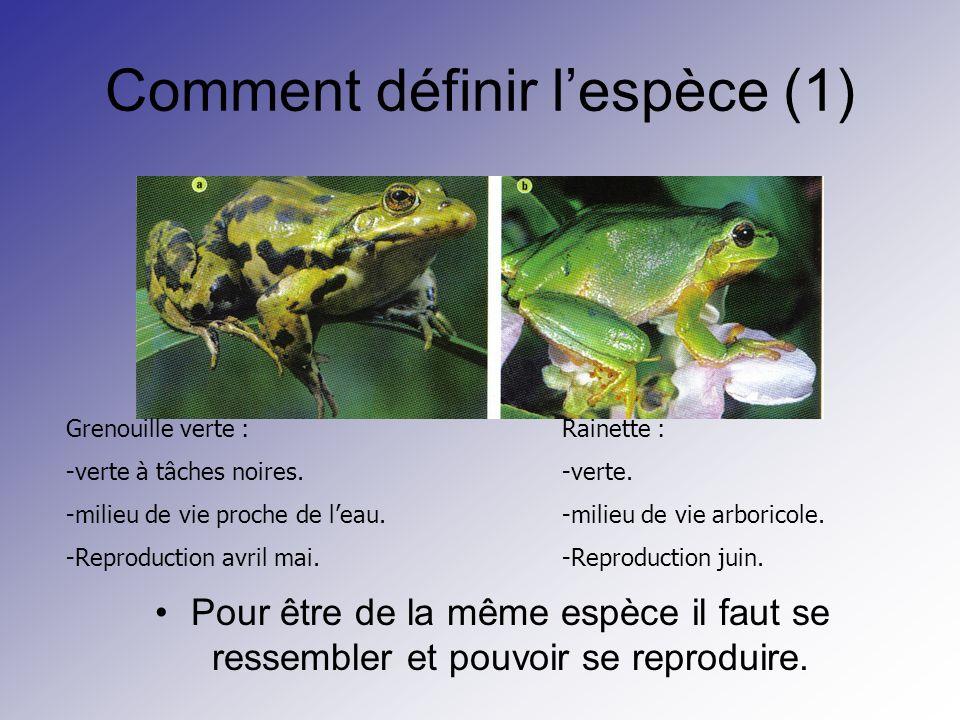 Comment définir l'espèce (1)