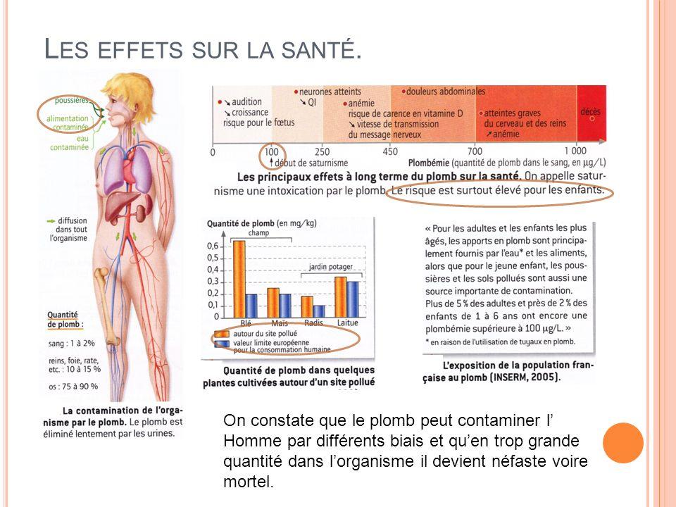 Les effets sur la santé. On constate que le plomb peut contaminer l'