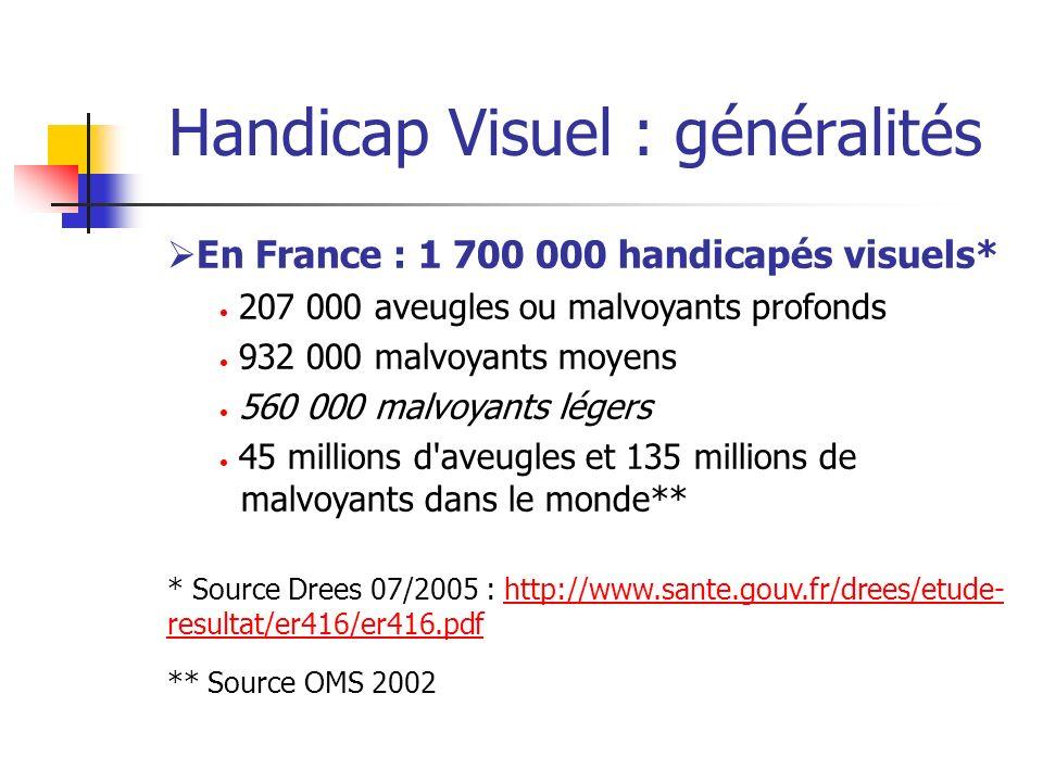 Handicap Visuel : généralités