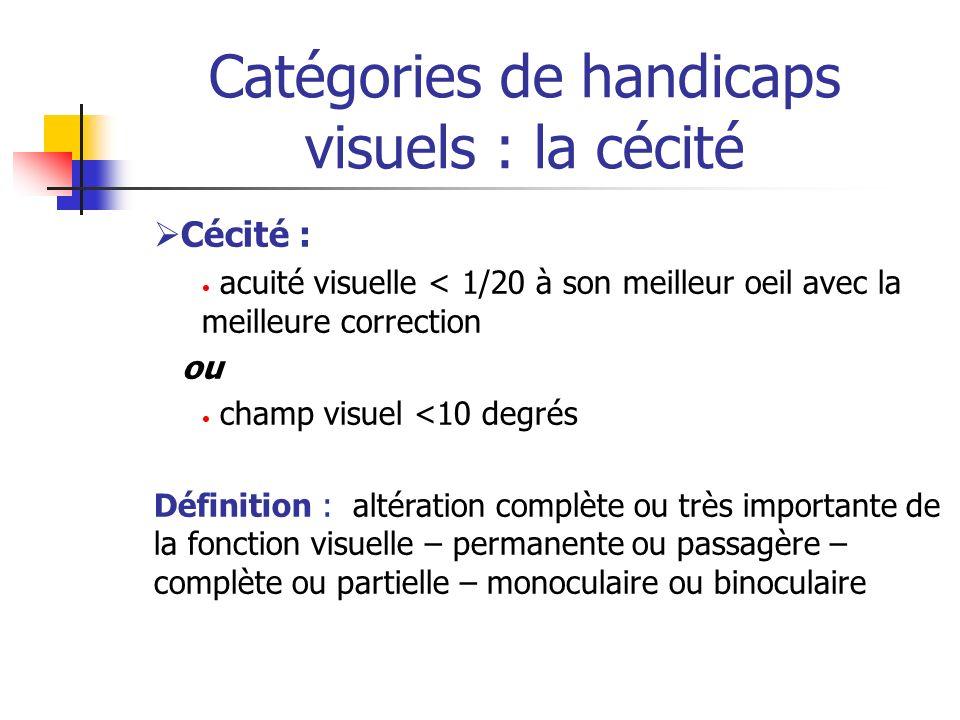 Catégories de handicaps visuels : la cécité