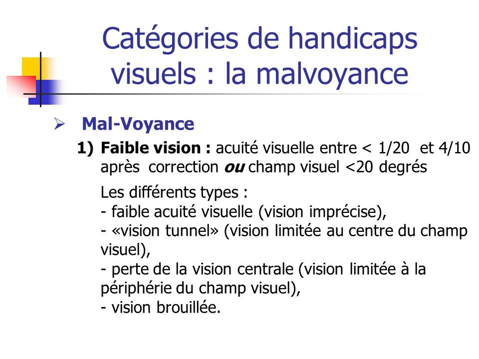 Catégories de handicaps visuels : la malvoyance