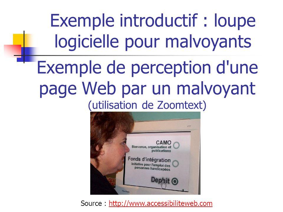 Exemple introductif : loupe logicielle pour malvoyants