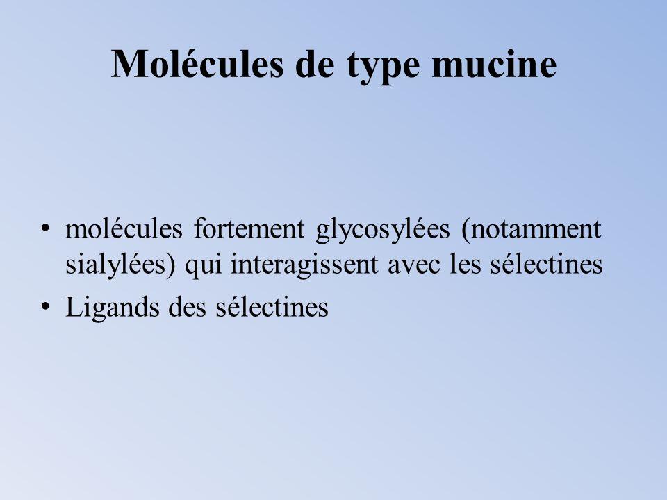 Molécules de type mucine