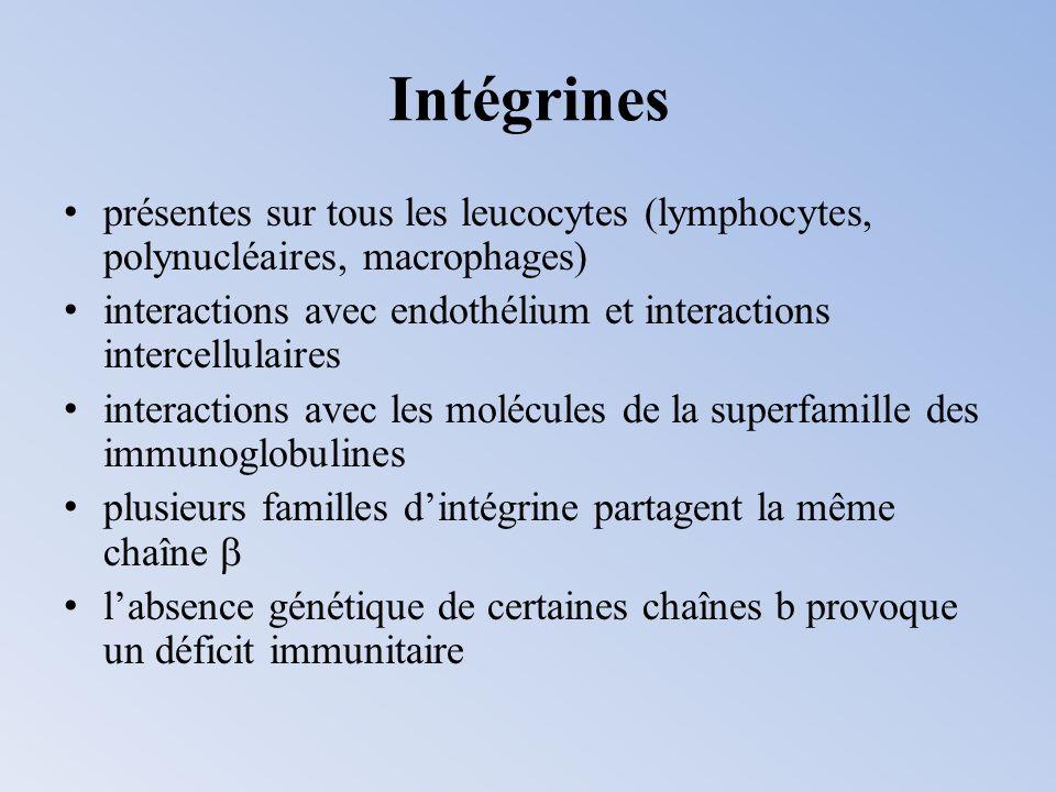Intégrines présentes sur tous les leucocytes (lymphocytes, polynucléaires, macrophages)