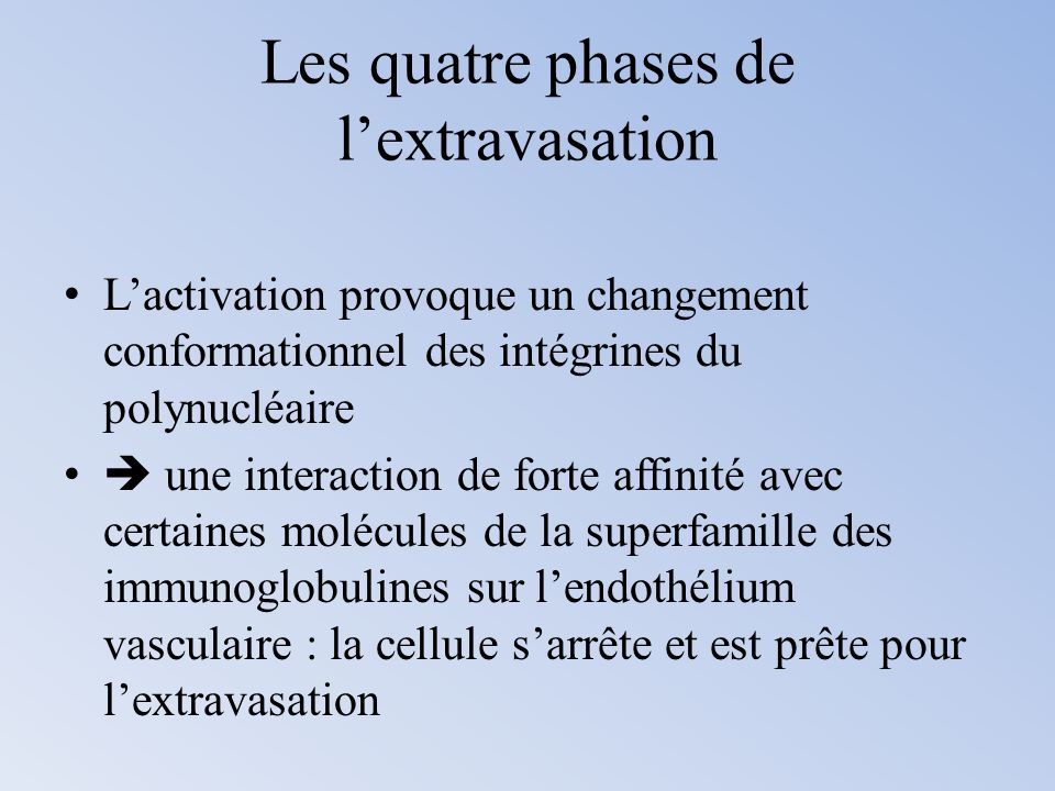 Les quatre phases de l'extravasation