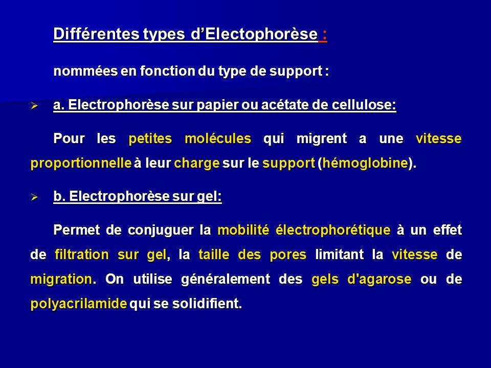 Différentes types d'Electophorèse :