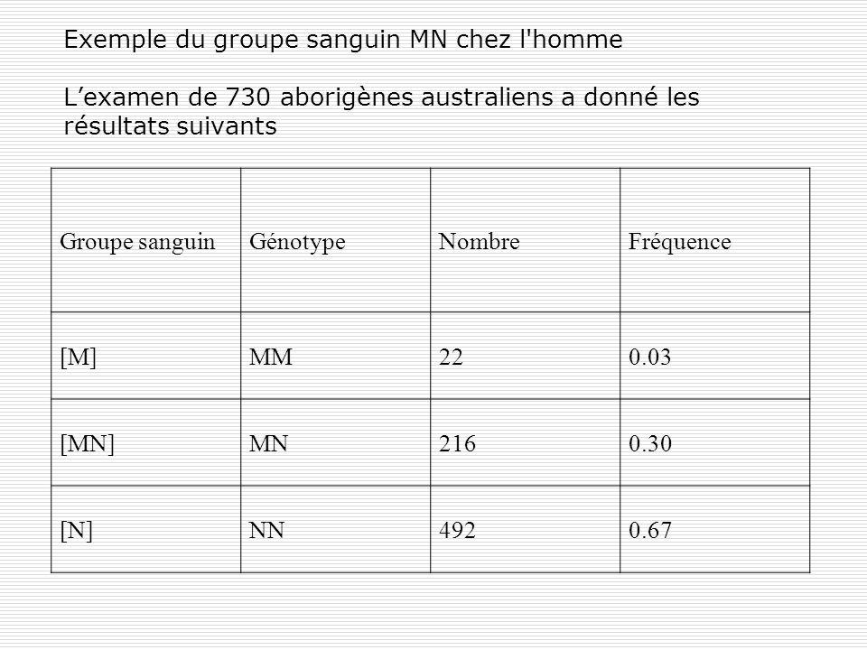 Exemple du groupe sanguin MN chez l homme L'examen de 730 aborigènes australiens a donné les résultats suivants