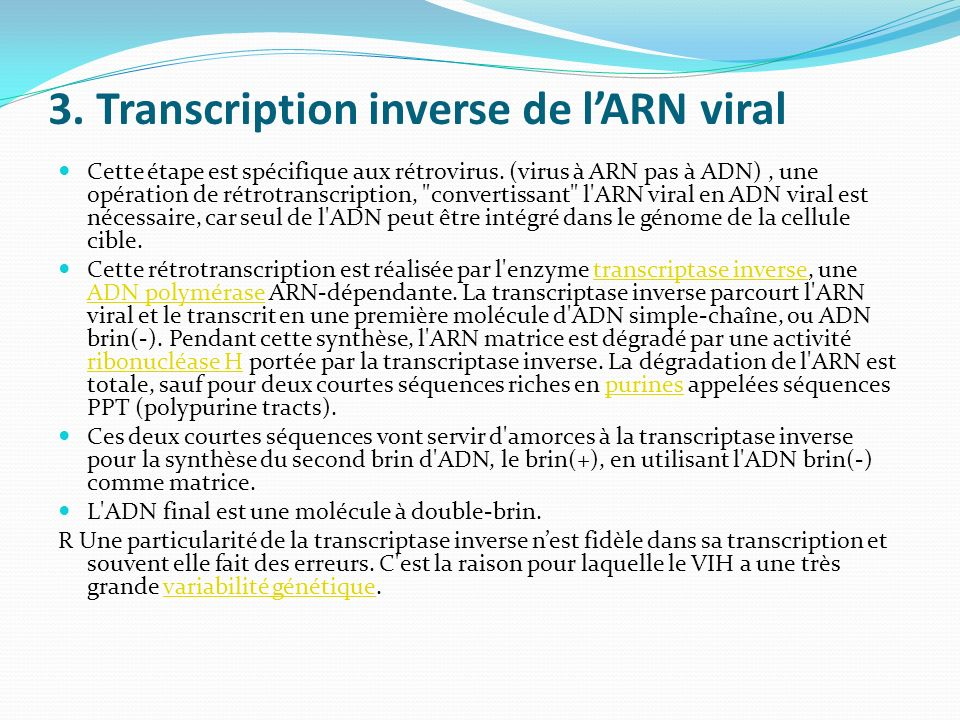 3. Transcription inverse de l'ARN viral