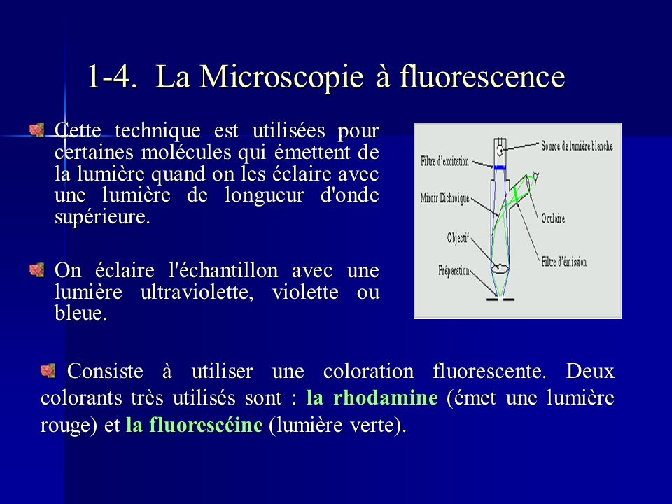 1-4. La Microscopie à fluorescence