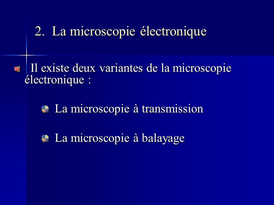 2. La microscopie électronique