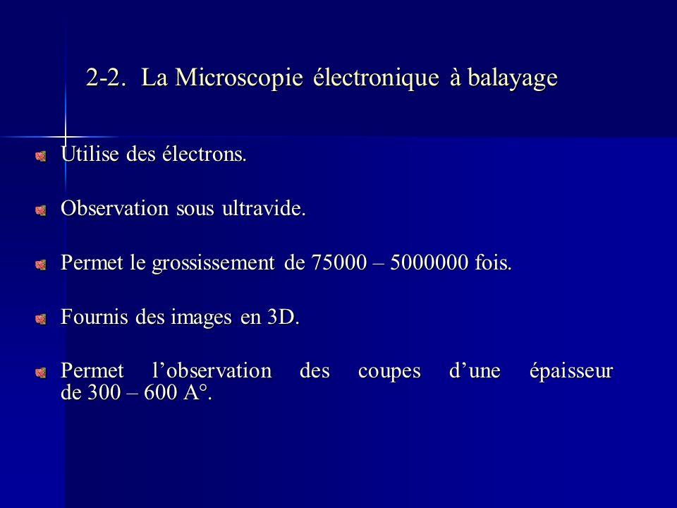 2-2. La Microscopie électronique à balayage