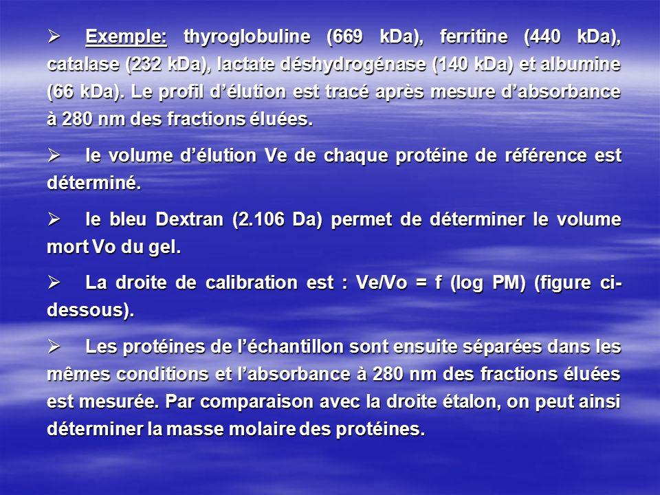 Exemple: thyroglobuline (669 kDa), ferritine (440 kDa), catalase (232 kDa), lactate déshydrogénase (140 kDa) et albumine (66 kDa). Le profil d'élution est tracé après mesure d'absorbance à 280 nm des fractions éluées.