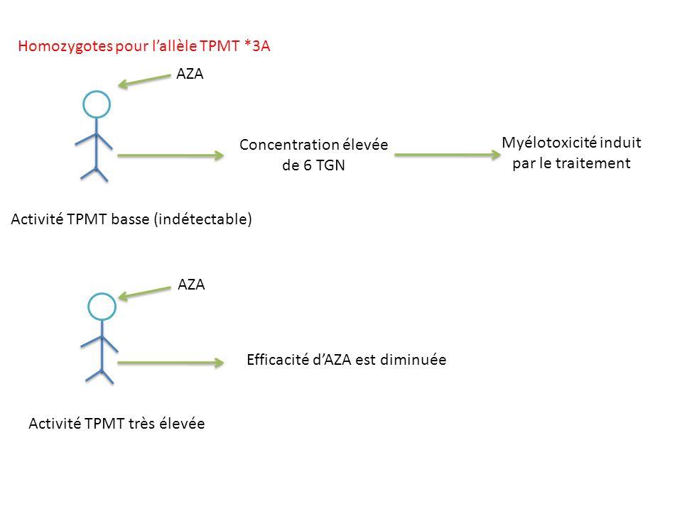Homozygotes pour l'allèle TPMT *3A