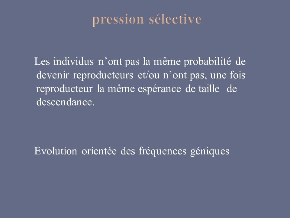 pression sélective