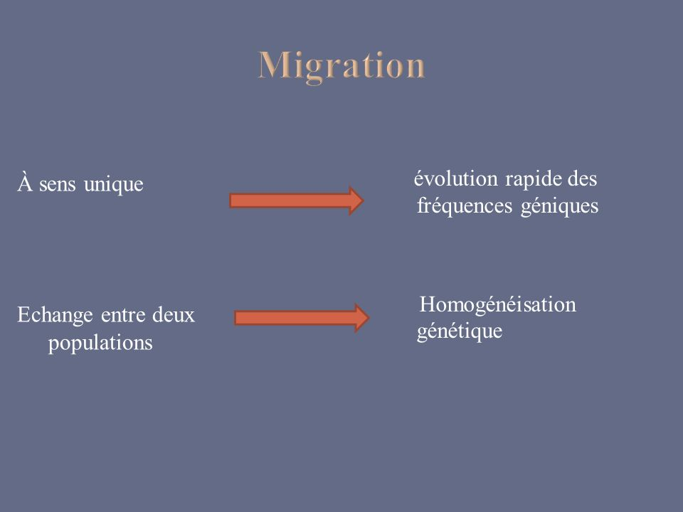 Migrationévolution rapide des fréquences géniques Homogénéisation génétique À sens unique Echange entre deux populations