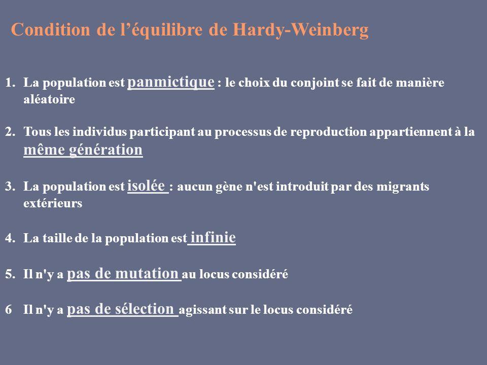 Condition de l'équilibre de Hardy-Weinberg